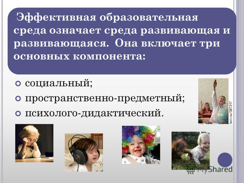 социальный; пространственно-предметный; психолого-дидактический. Эффективная образовательная среда означает среда развивающая и развивающаяся. Она включает три основных компонента: