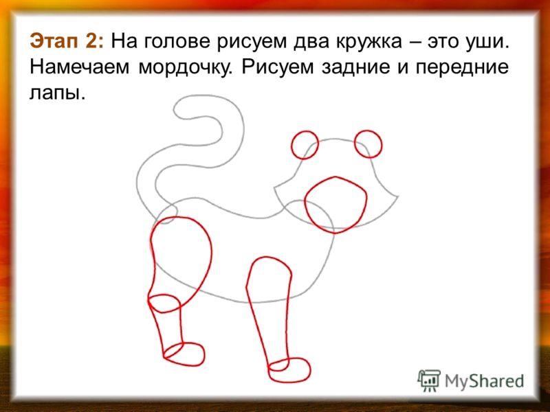 Этап 2: На голове рисуем два кружка – это уши. Намечаем мордочку. Рисуем задние и передние лапы.