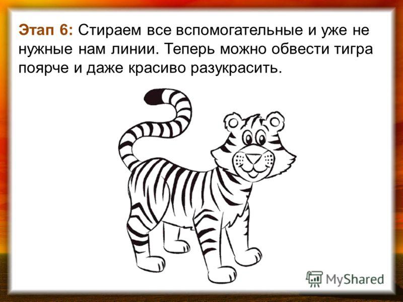 Этап 6: Стираем все вспомогательные и уже не нужные нам линии. Теперь можно обвести тигра поярче и даже красиво разукрасить.