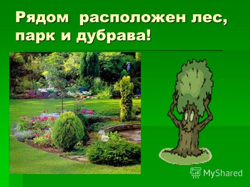 Недалеко река Волга, где вы можете хорошо отдохнуть!