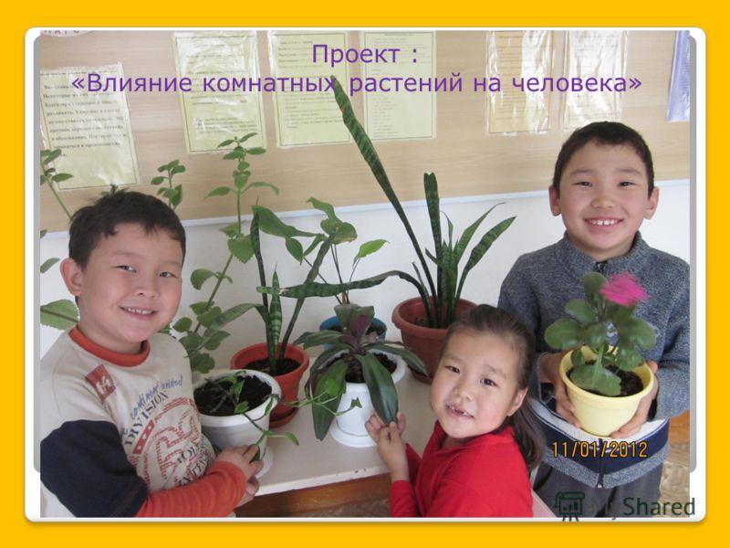 Проект : «Влияние комнатных растений на человека»