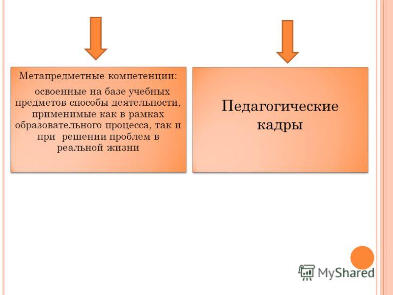 Метапредметные компетенции: освоенные на базе учебных предметов способы деятельности, применимые как в рамках образовательного процесса, так и при решении проблем в реальной жизни Педагогические кадры