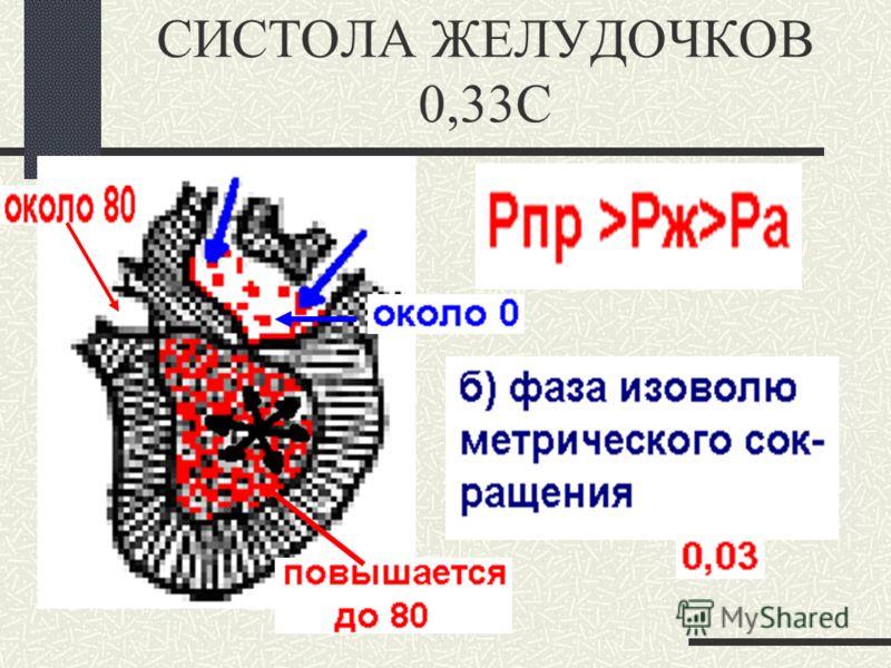 СИСТОЛА ЖЕЛУДОЧКОВ 0,33С. 1.период напряжения
