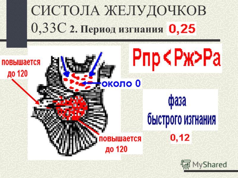 СИСТОЛА ЖЕЛУДОЧКОВ 0,33С