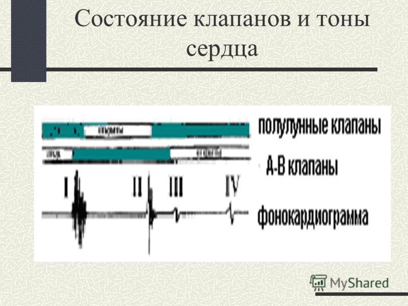 Динамика давления в левом сердце и аорте во время СЦ