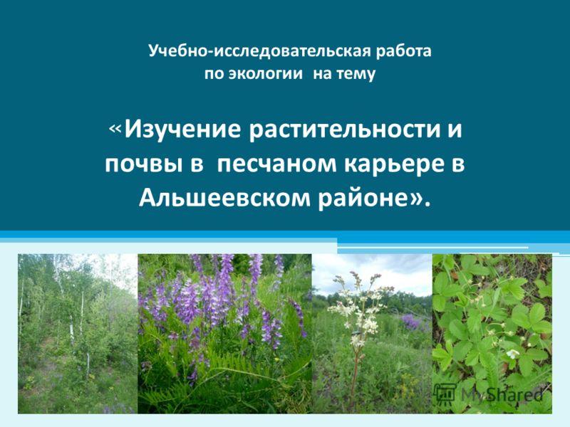« Изучение растительности и почвы в песчаном карьере в Альшеевском районе». Учебно-исследовательская работа по экологии на тему