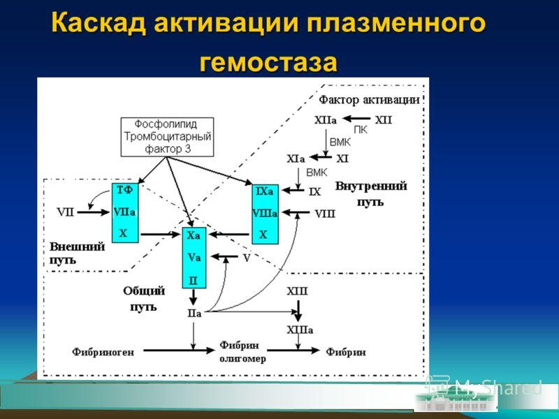 Каскад активации плазменного гемостаза