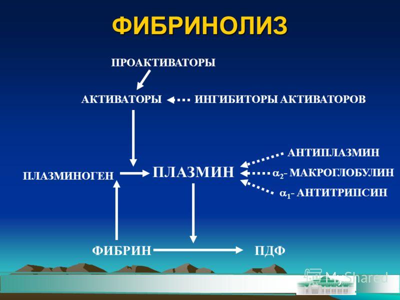 ФИБРИНОЛИЗ ПРОАКТИВАТОРЫ АКТИВАТОРЫИНГИБИТОРЫ АКТИВАТОРОВ ПЛАЗМИНОГЕН ПЛАЗМИН АНТИПЛАЗМИН 2 - МАКРОГЛОБУЛИН 1 - АНТИТРИПСИН ФИБРИНПДФ