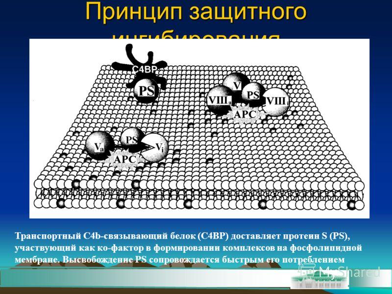 Принцип защитного ингибирования Транспортный С4b-связывающий белок (С4ВР) доставляет протеин S (РS), участвующий как ко-фактор в формировании комплексов на фосфолипидной мембране. Высвобождение РS сопровождается быстрым его потреблением