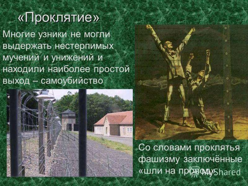 «Проклятие» Многие узники не могли выдержать нестерпимых мучений и унижений и находили наиболее простой выход – самоубийство Со словами проклятья фашизму заключённые «шли на провод»