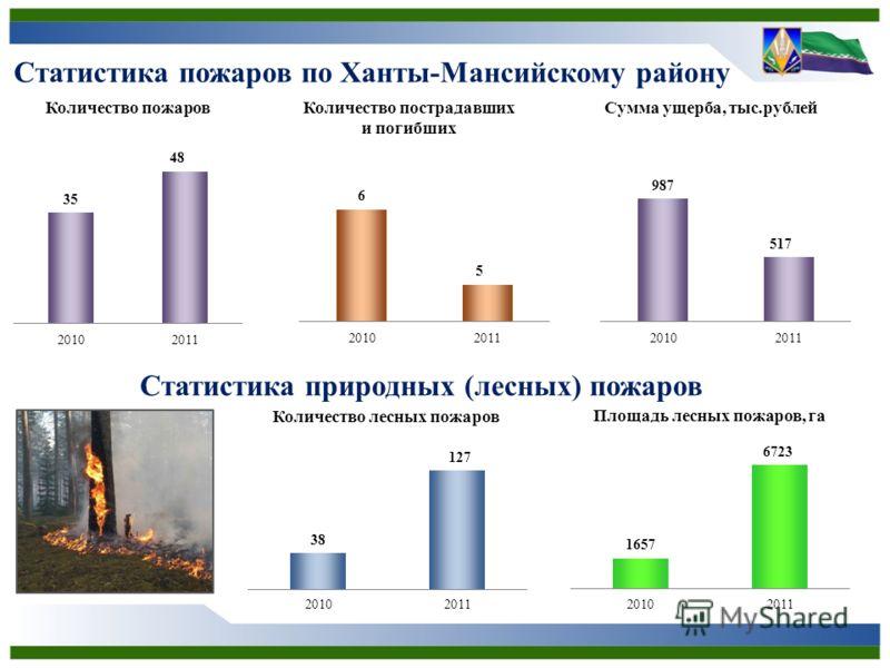 Статистика пожаров по Ханты-Мансийскому району Статистика природных (лесных) пожаров