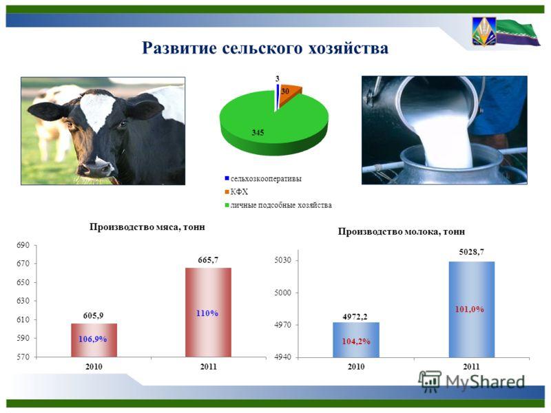 Развитие сельского хозяйства 106,9%