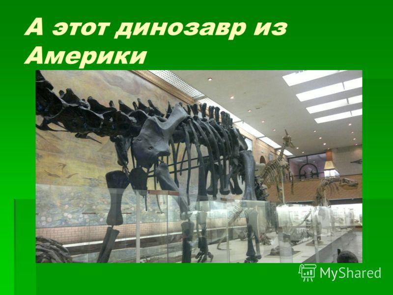 А этот динозавр из Америки