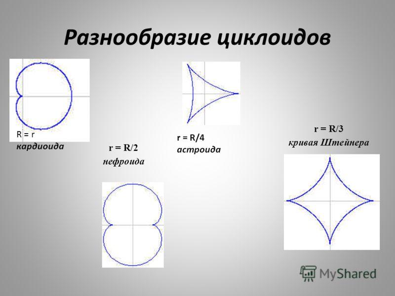 Разнообразие циклоидов r = R/2 нефроида r = R/3 кривая Штейнера r = R/4 астроида R = r кардиоида