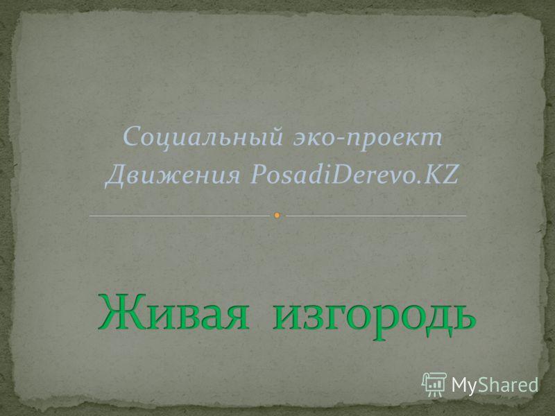 Социальный эко-проект Движения PosadiDerevo.KZ