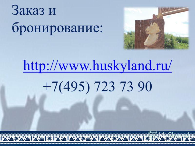 Заказ и бронирование: http://www.huskyland.ru/ +7(495) 723 73 90