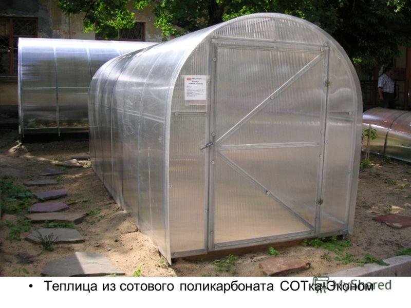 Теплица из сотового поликарбоната СОТка-Эконом
