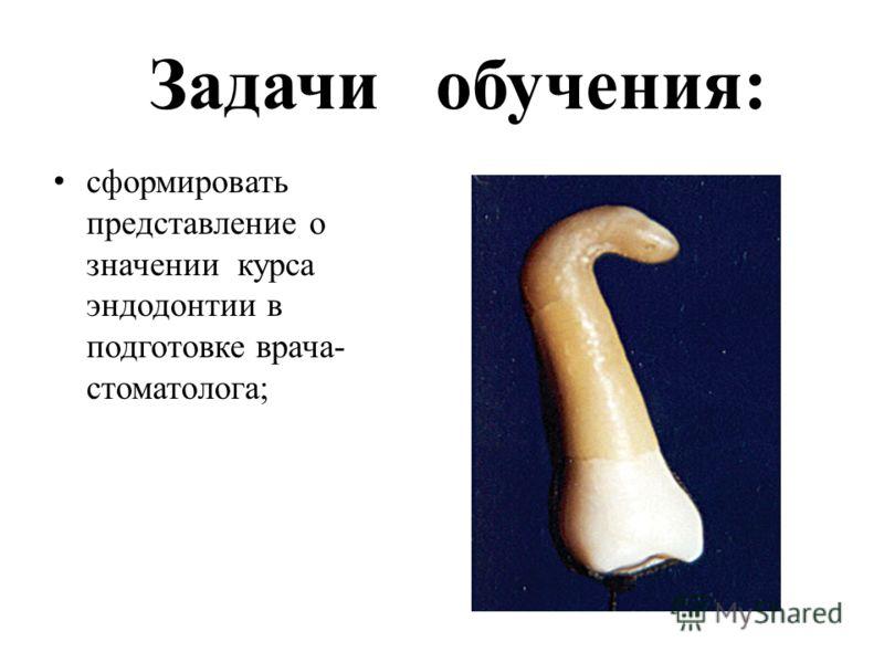 Задачи обучения: сформировать представление о значении курса эндодонтии в подготовке врача- стоматолога;