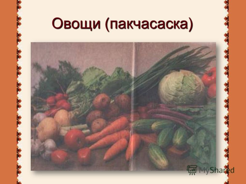 Овощи (пакчасаска)