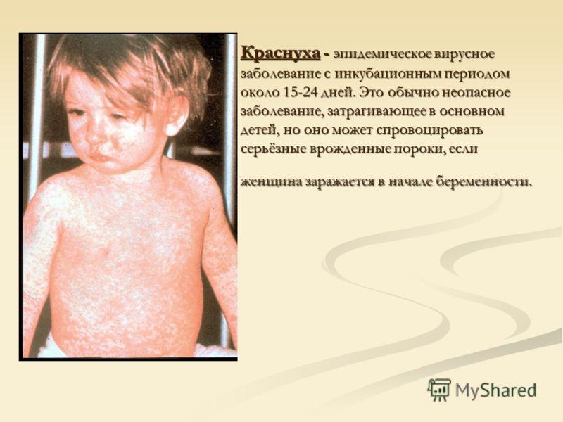 Краснуха - эпидемическое вирусное заболевание с инкубационным периодом около 15-24 дней. Это обычно неопасное заболевание, затрагивающее в основном детей, но оно может спровоцировать серьёзные врожденные пороки, если женщина заражается в начале берем