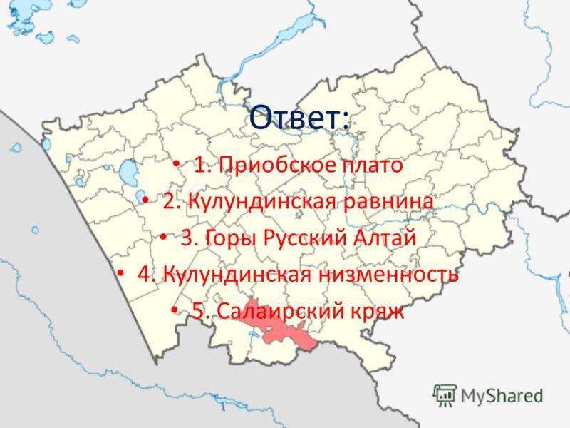Ответ: 1. Приобское плато 2. Кулундинская равнина 3. Горы Русский Алтай 4. Кулундинская низменность 5. Салаирский кряж