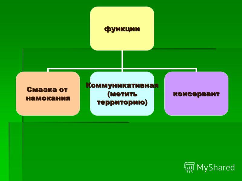 функции Смазка от намоканияКоммуникативная(метить территорию) консервант