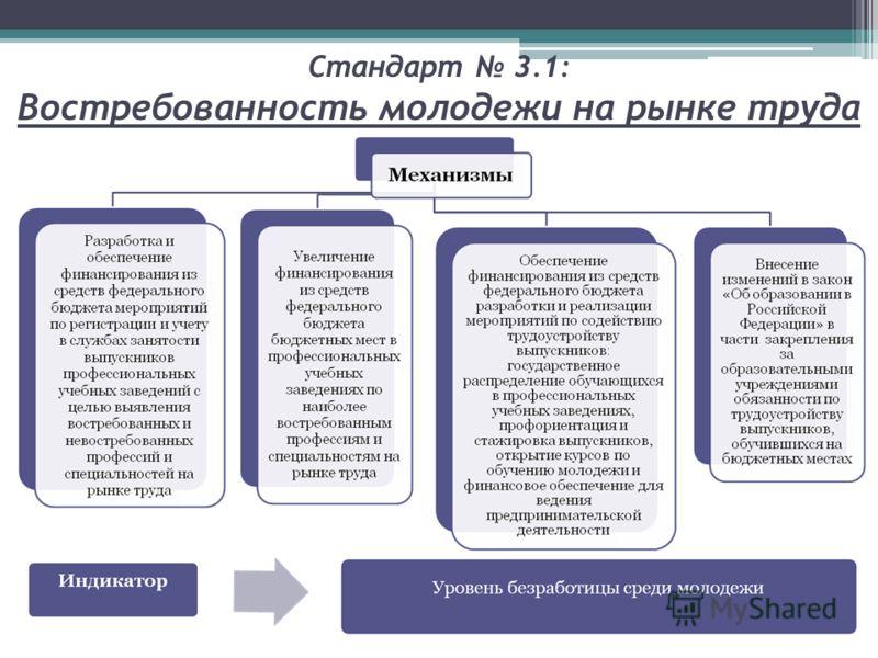 Стандарт 3.1: Востребованность молодежи на рынке труда