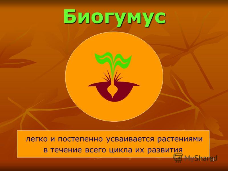 13 Биогумус легко и постепенно усваивается растениями в течение всего цикла их развития