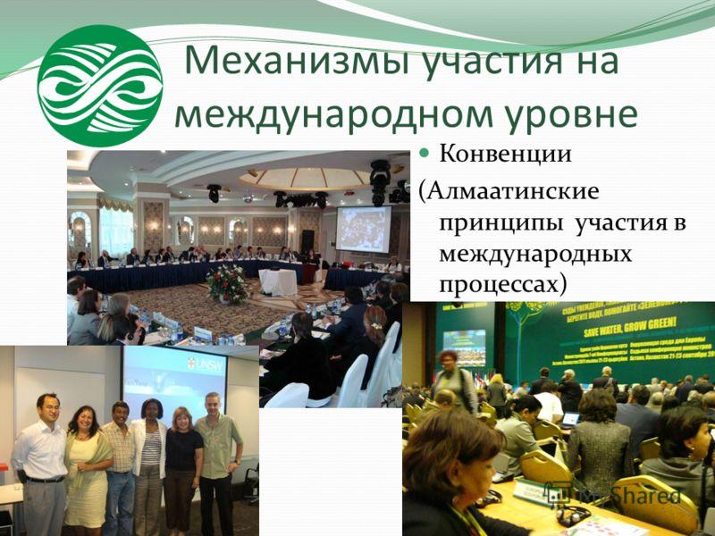 Механизмы участия на международном уровне Конвенции (Алмаатинские принципы участия в международных процессах)