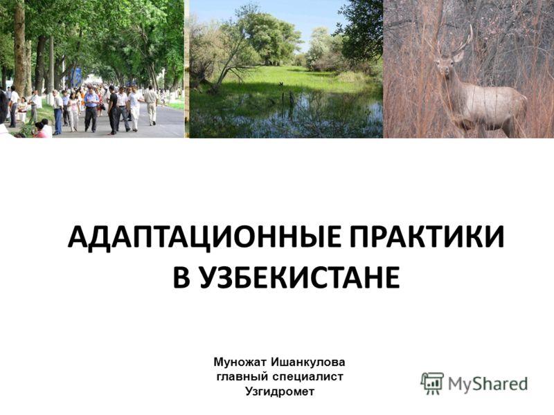 АДАПТАЦИОННЫЕ ПРАКТИКИ В УЗБЕКИСТАНЕ Муножат Ишанкулова главный специалист Узгидромет