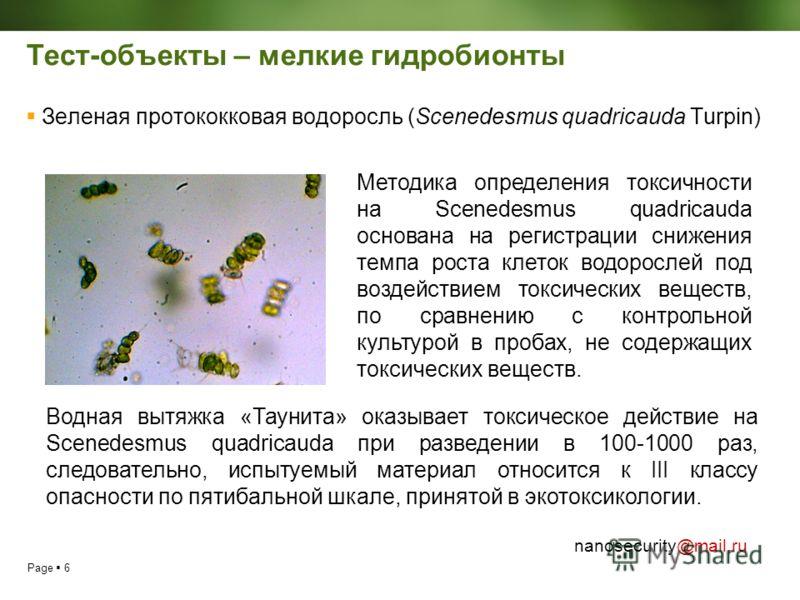 Page 6 nanosecurity@mail.ru Тест-объекты – мелкие гидробионты Зеленая протококковая водоросль (Scenedesmus quadricauda Turpin) Методика определения токсичности на Scenedesmus quadricauda основана на регистрации снижения темпа роста клеток водорослей