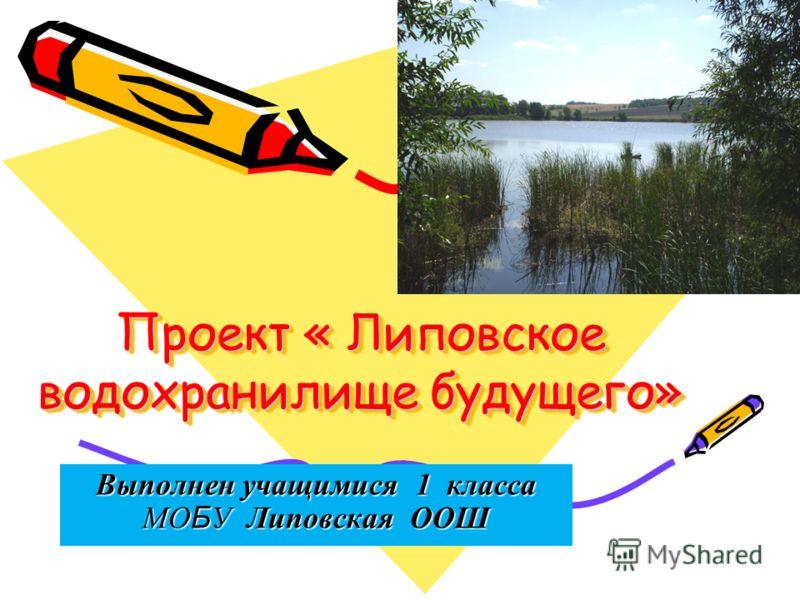 Проект « Липовское водохранилище будущего» Выполнен учащимися 1 класса МО Б У Липовская ООШ