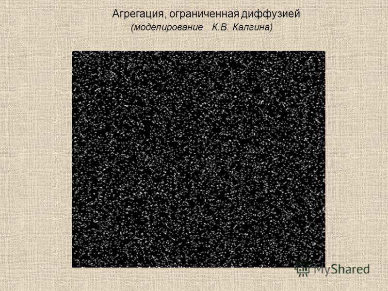 Агрегация, ограниченная диффузией (моделирование К.В. Калгина)