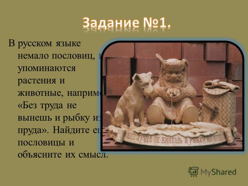 В русском языке немало пословиц, где упоминаются растения и животные, например: «Без труда не вынешь и рыбку из пруда». Найдите ещё пословицы и объясните их смысл.