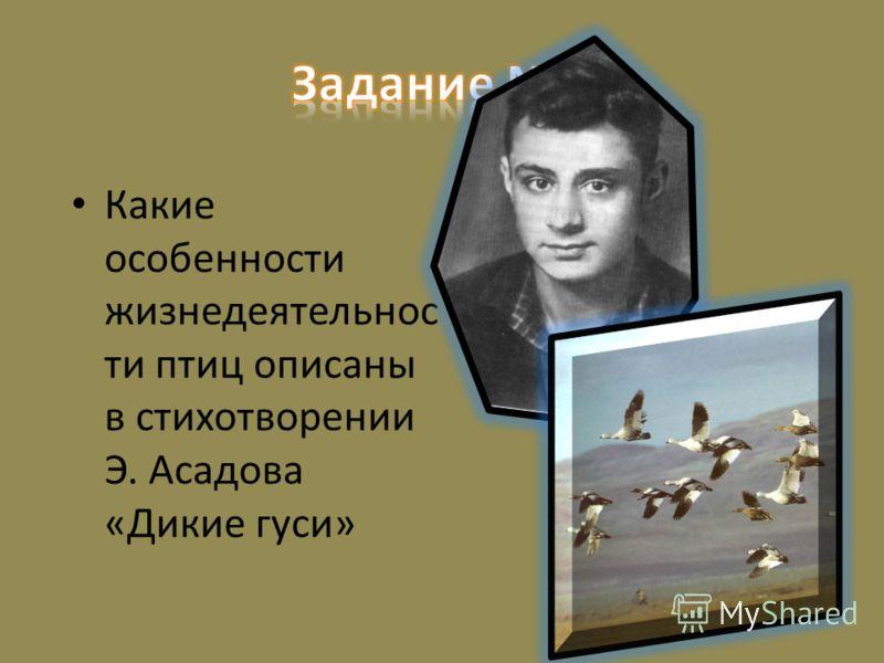 Какие особенности жизнедеятельнос ти птиц описаны в стихотворении Э. Асадова «Дикие гуси»