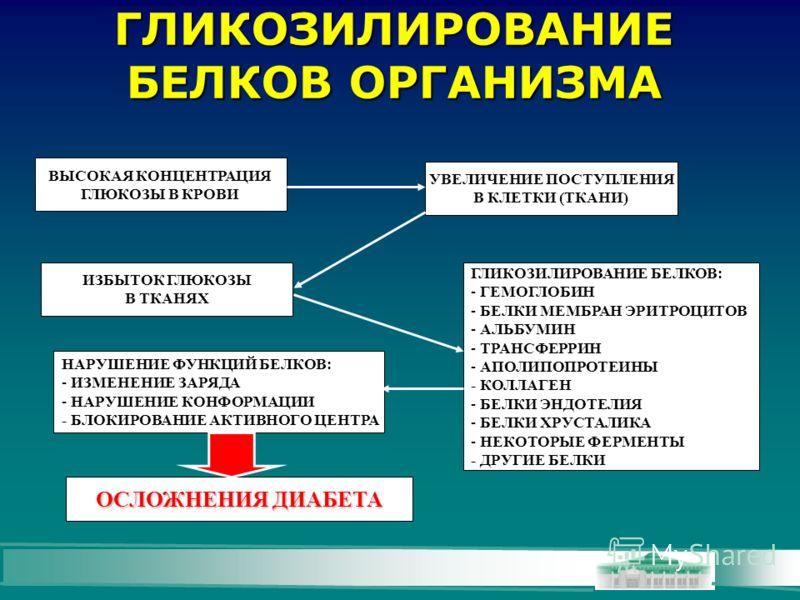 ГЛИКОЗИЛИРОВАНИЕ БЕЛКОВ ОРГАНИЗМА ВЫСОКАЯ КОНЦЕНТРАЦИЯ ГЛЮКОЗЫ В КРОВИ УВЕЛИЧЕНИЕ ПОСТУПЛЕНИЯ В КЛЕТКИ (ТКАНИ) ИЗБЫТОК ГЛЮКОЗЫ В ТКАНЯХ ГЛИКОЗИЛИРОВАНИЕ БЕЛКОВ: - ГЕМОГЛОБИН - БЕЛКИ МЕМБРАН ЭРИТРОЦИТОВ - АЛЬБУМИН - ТРАНСФЕРРИН - АПОЛИПОПРОТЕИНЫ - КОЛ