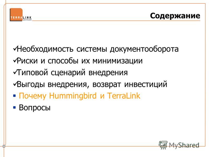 Необходимость системы документооборота Риски и способы их минимизации Типовой сценарий внедрения Выгоды внедрения, возврат инвестиций Почему Hummingbird и TerraLink Вопросы Содержание