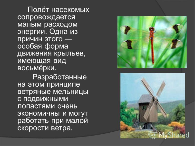 Полёт насекомых сопровождается малым расходом энергии. Одна из причин этого особая форма движения крыльев, имеющая вид восьмёрки. Разработанные на этом принципе ветряные мельницы с подвижными лопастями очень экономичны и могут работать при малой скор