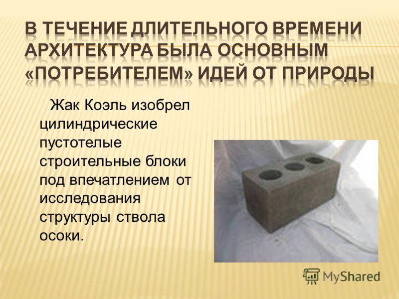 Жак Коэль изобрел цилиндрические пустотелые строительные блоки под впечатлением от исследования структуры ствола осоки.