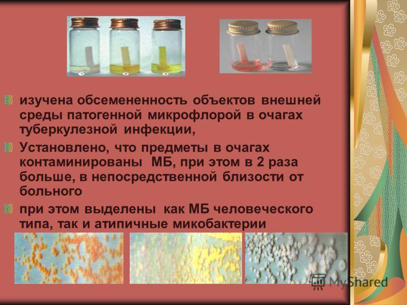 изучена обсемененность объектов внешней среды патогенной микрофлорой в очагах туберкулезной инфекции, Установлено, что предметы в очагах контаминированы МБ, при этом в 2 раза больше, в непосредственной близости от больного при этом выделены как МБ че