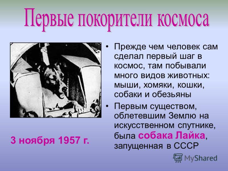 Прежде чем человек сам сделал первый шаг в космос, там побывали много видов животных: мыши, хомяки, кошки, собаки и обезьяны Первым существом, облетевшим Землю на искусственном спутнике, была собака Лайка, запущенная в СССР 3 ноября 1957 г.