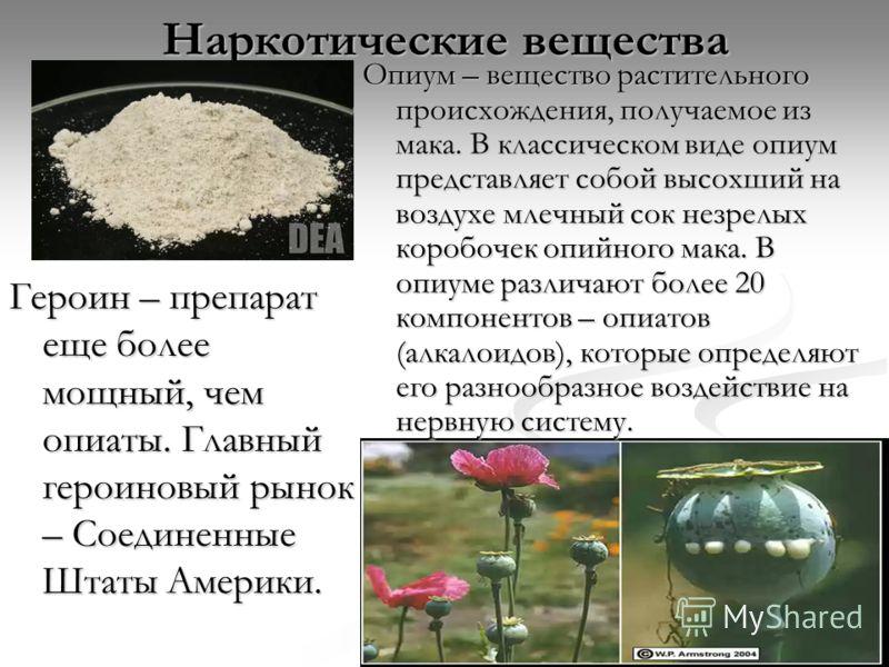 Наркотические вещества Опиум – вещество растительного происхождения, получаемое из мака. В классическом виде опиум представляет собой высохший на воздухе млечный сок незрелых коробочек опийного мака. В опиуме различают более 20 компонентов – опиатов