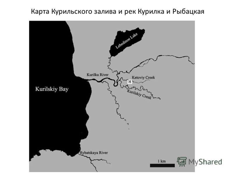Карта Курильского залива и рек Курилка и Рыбацкая