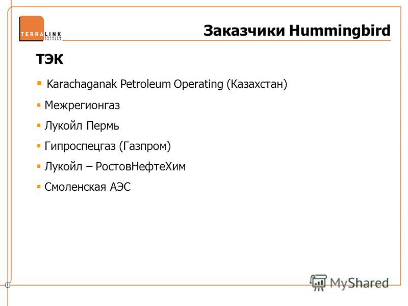 Заказчики Hummingbird ТЭК Karachaganak Petroleum Operating (Казахстан) Межрегионгаз Лукойл Пермь Гипроспецгаз (Газпром) Лукойл – РостовНефтеХим Смоленская АЭС