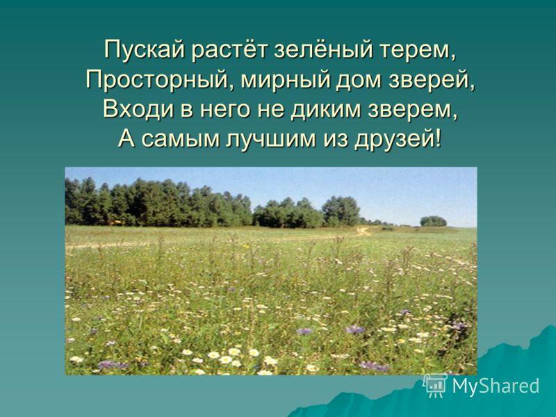 Пускай растёт зелёный терем, Просторный, мирный дом зверей, Входи в него не диким зверем, А самым лучшим из друзей!