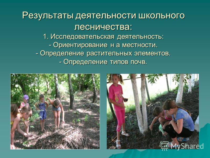 Результаты деятельности школьного лесничества: 1. Исследовательская деятельность: - Ориентирование н а местности. - Определение растительных элементов. - Определение типов почв.