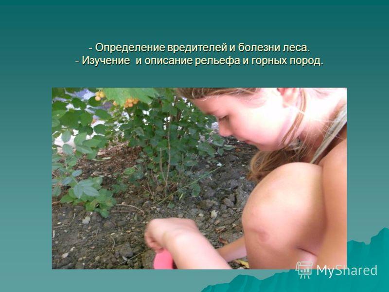 - Определение вредителей и болезни леса. - Изучение и описание рельефа и горных пород.