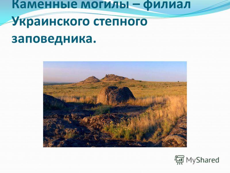 Каменные могилы – филиал Украинского степного заповедника.