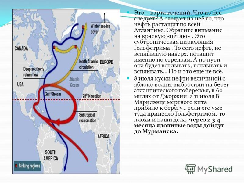 Это – карта течений. Что из нее следует? А следует из неё то, что нефть растащит по всей Атлантике. Обратите внимание на красную «петлю». Это субтропическая циркуляция Гольфстрима. То есть нефть, не всплывшую наверх, потащит именно по стрелкам. А по