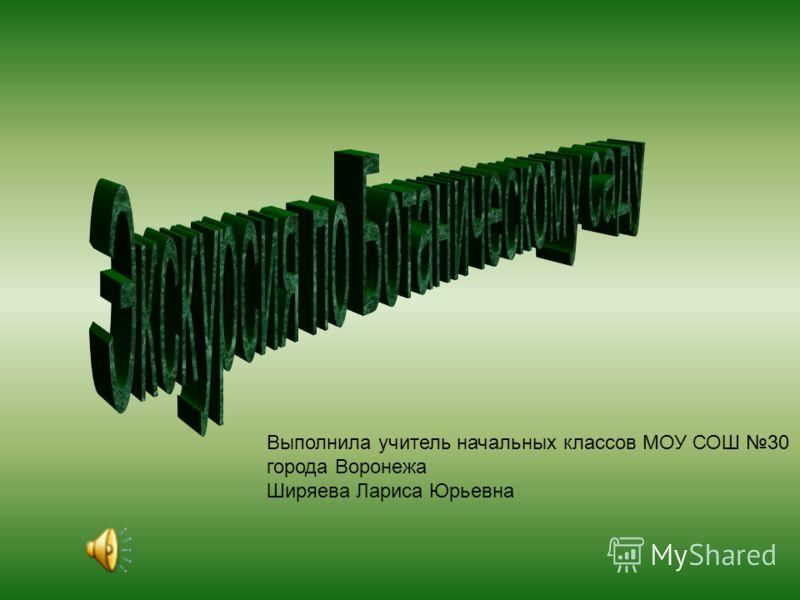Выполнила учитель начальных классов МОУ СОШ 30 города Воронежа Ширяева Лариса Юрьевна